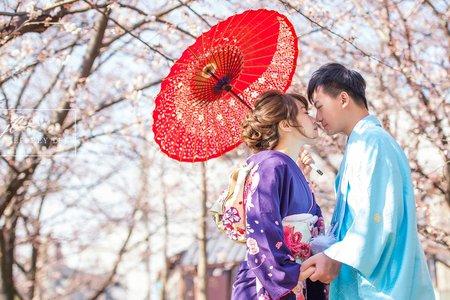 2019年4月浪漫京都櫻花婚紗團