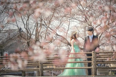 『海外婚紗』關西櫻花婚紗