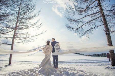 『婚紗攝影 』北海道雪景婚紗