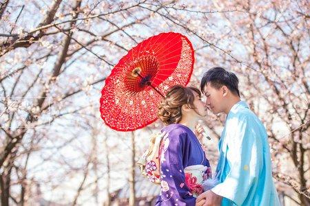 2020年4月浪漫春季櫻花婚紗團