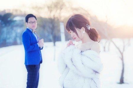 『婚紗攝影』北海道秋冬之美婚紗