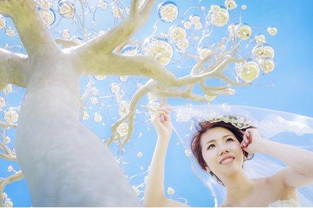 綱威&芷羚 我們結婚了 (台南推薦婚禮攝影師)