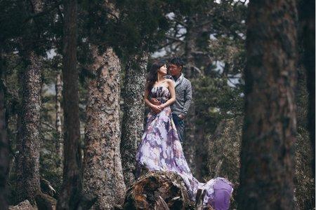 野人寫真 | 婚紗純攝影方案