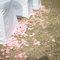 元龍 & 貝姍 戶外證婚儀式-台北園外園(編號:178905)