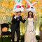 元龍 & 貝姍 戶外證婚儀式-台北園外園(編號:178940)