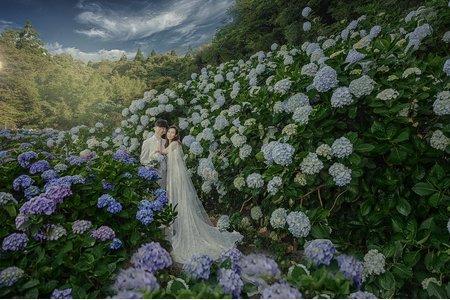 胖哥自助婚紗作品之繡球花