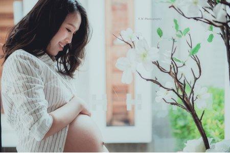 WP幸福專區•孕。寫真•