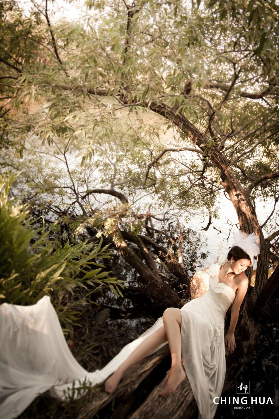 (編號:193287) - 青樺婚紗CHINGHUA - 結婚吧