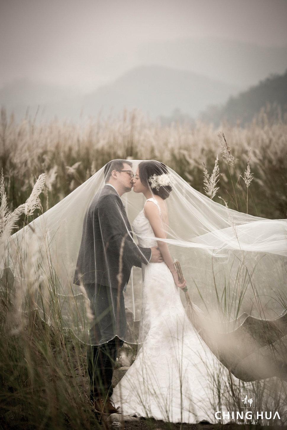 (編號:433065) - 青樺婚紗CHINGHUA - 結婚吧