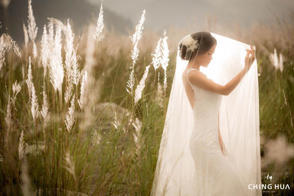 (編號:433067) - 青樺婚紗CHINGHUA - 結婚吧