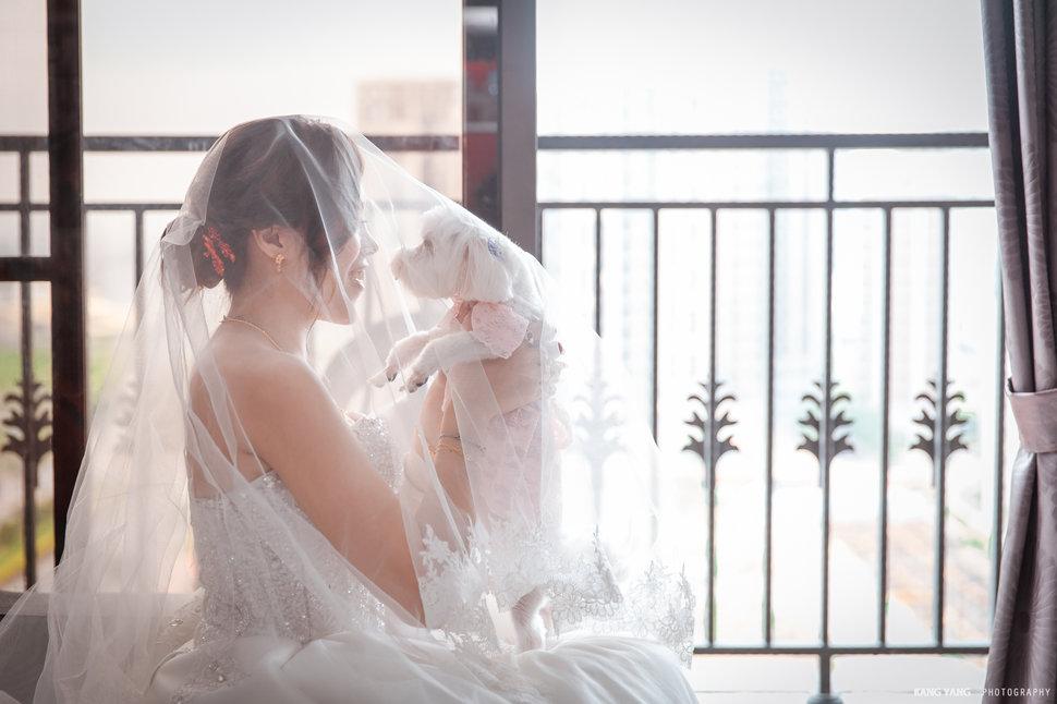 (編號:228785) - 百二婚禮工作室 - 婚攝楊康 - 結婚吧