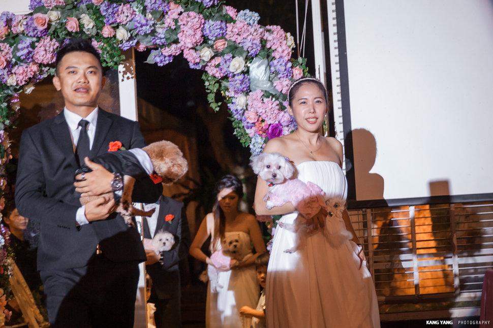 J&L早儀晚宴@台北青青婚宴會館/夏綠蒂廳(編號:228827) - 婚攝楊康影像Kstudio《結婚吧》