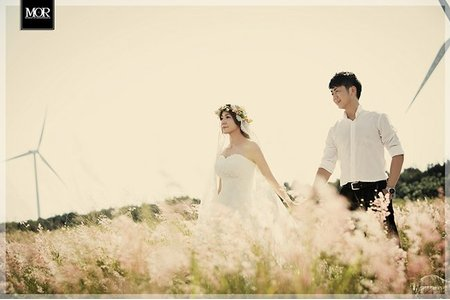 ▊MOR婚紗/深秋的芒草斜陽▊