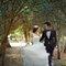 婚紗 婚紗攝影/台灣之美-流光樹影