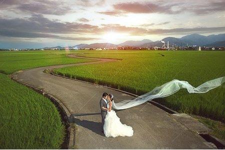 婚紗|婚紗攝影/台灣之美-蔓延小徑