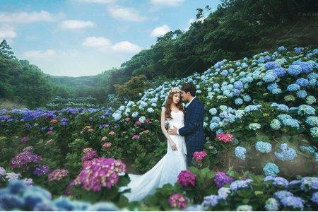 婚紗|婚紗攝影/台灣之美-花見幸福