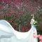婚紗外拍景點,婚紗攝影,婚紗照,台中華納婚紗推薦,櫻花花海