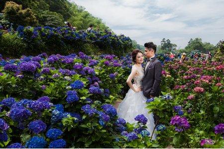 繡球花婚禮