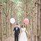wedding婚紗造型 x JOYCE(編號:297861)
