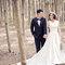 wedding婚紗造型 x JOYCE(編號:297866)