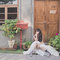 婚紗造型 x 方棠(編號:298077)