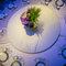 [桃園] 川門子餐廳 | 訂結 + 晚宴(編號:478508)