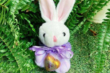百年好合福袋兔/熊(含愛心巧克力)