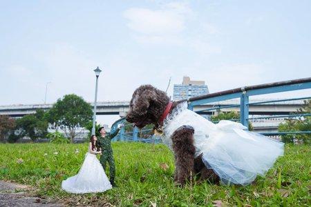 春之嫁衣婚紗攝影~客照