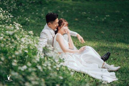 【風格婚紗】韓式棚拍|清新森林|浪漫互動