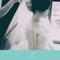 婚禮紀錄總精華包(編號:406442)