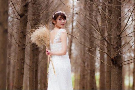 落羽松婚紗