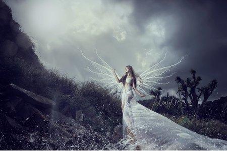 海洋天使創作