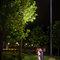 [自助婚紗] Shawn & Melissa│奇美博物館│婚紗攝影│夜景婚紗│銀河婚紗│PRE-WEDDING(編號:436019)