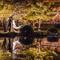 [京都婚紗] Masahiro & Chieh│日本京都│海外婚紗│自助婚紗│婚紗攝影PRE-WEDDING(編號:507354)