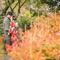 [京都婚紗] Masahiro & Chieh│日本京都│海外婚紗│自助婚紗│婚紗攝影PRE-WEDDING(編號:507368)