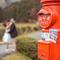 [海外婚紗] Masahiro & Chieh│日本京都│自助婚紗PRE-WEDDING(編號:507388)