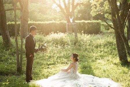 浪漫光影婚紗