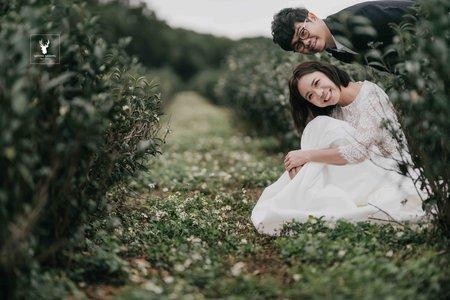 家園印象美式婚紗