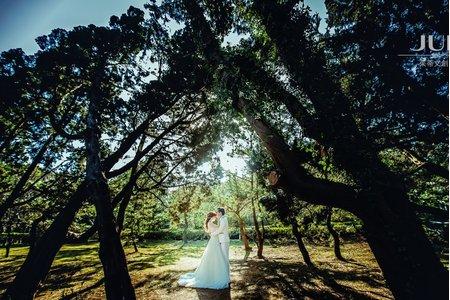 (JUDY茱蒂文創.婚禮)❤️最新客照