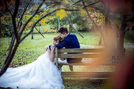 淳皓❤️伃珉 | JUDY文創.婚禮 | 婚紗照 | 陽明山花卉 | 黑森林 | 芒草