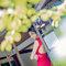 熾廣❤️喻涵  JUDY茱蒂文創婚禮  婚紗照  台北外拍景點 時尚曼谷 仙人掌園 (2)