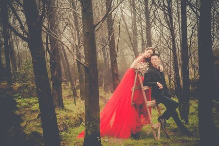 ❤️【judy婚紗推薦】  【judy婚紗】  【judy婚紗禮服推薦】  【judy婚紗禮服分享】最新客照 | JUDY文創.婚禮 | 婚紗照 | 陽明山 | 婚紗基地 | 陽明山花卉 | 台北婚紗