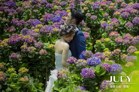 【judy婚紗】❤️繡球花| JUDY文創.婚禮 | 陽明山 | 台北婚紗景點推薦