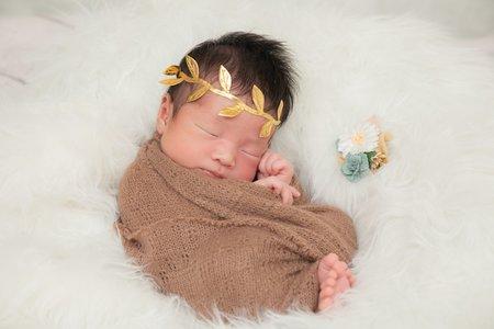 [攝影] 新生兒寫真   婚禮紀錄攝影師   全省服務
