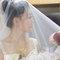 蓓麗宛婚禮時尚(編號:504428)
