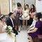 蓓麗宛婚禮時尚(編號:523516)