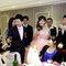 蓓麗宛婚禮時尚(編號:523532)