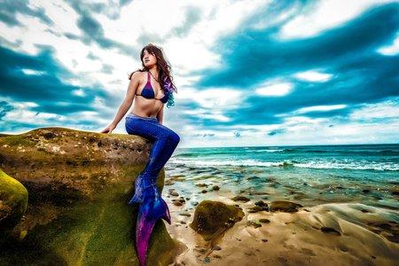 紫色迷情美人魚