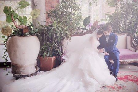 沈小姐婚紗照