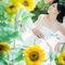 婚紗(編號:551102)